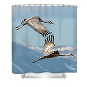 Headed North Shower Curtain