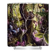 Heist Of The Wizard's Staff Shower Curtain