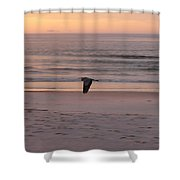 Heron On The Downwing Shower Curtain
