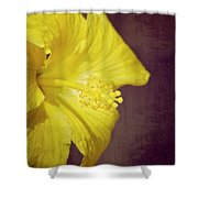 Hibiscus Yellow Shower Curtain by Carolyn Marshall
