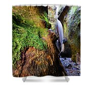 Hidden Falls Sombrio Beach 2 Shower Curtain