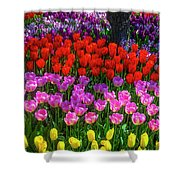 Hidden Garden Of Beautiful Tulips Shower Curtain