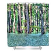 High Bayou Water Shower Curtain