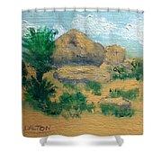 High Desert Rock Garden Shower Curtain