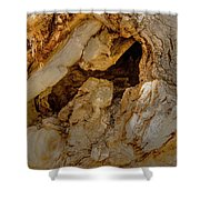 Hollow Tree Knot Shower Curtain