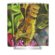 Honey Bee On Mexican Heather Shower Curtain