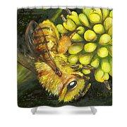 Honey Bee On Wild Golden Glow Shower Curtain