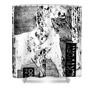 Horse Front 3 Shower Curtain