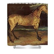 Horse In The Storm 1821 Shower Curtain