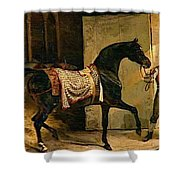 Horse Leaving A Stable Shower Curtain