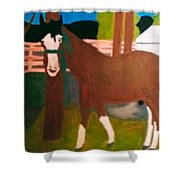 Horse On A Ranch Shower Curtain