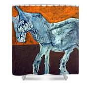 Horse On Orange Shower Curtain