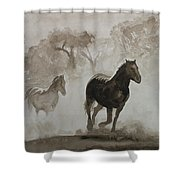 Horses In The Mist Shower Curtain