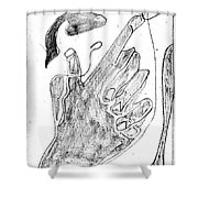 How The Camel Got His Hump Digital And Drawings D12-3 Shower Curtain