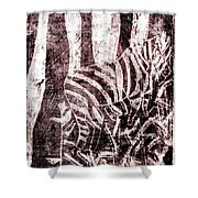 How The Leopard Got His Spots Zebra D16ed3 Shower Curtain