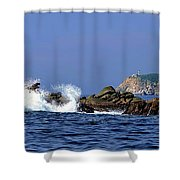 Huatulco Lighthouse Shower Curtain