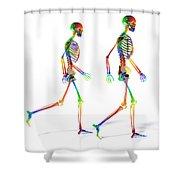 Human Skeleton Pair Shower Curtain