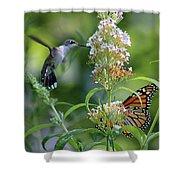 Hummingbird And Monarch Shower Curtain