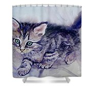 Hunting For A Mouse Shower Curtain