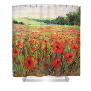 I Dream Of Poppies Shower Curtain