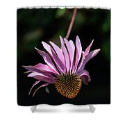 I Will Remember Summer Shower Curtain