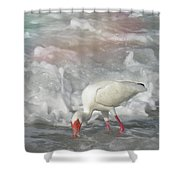 Ibis And A Tinted Sea Shower Curtain