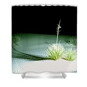 Illuminated Yucca At Night In White Sands National Monument, New Mexico - Newm500 00108 Shower Curtain