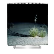 Illuminated Yucca At Night In White Sands National Monument, New Mexico - Newm500 00110 Shower Curtain