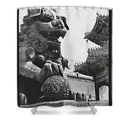 Imperial Lion  Beijing    Shower Curtain