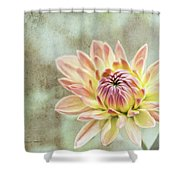 Impression Flower Shower Curtain