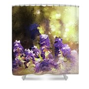 Impressions Of Muscari Shower Curtain