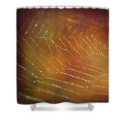 Intensity Shower Curtain by Michelle Wermuth