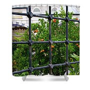 Iron Fencing Shower Curtain