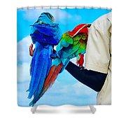 Island Birds  Shower Curtain