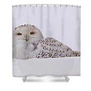 It's All In The Eyes Shower Curtain
