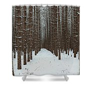 January Forest Shower Curtain