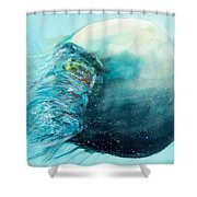 Jellyfish 4 Shower Curtain