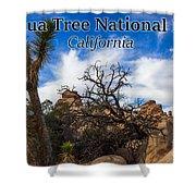 Joshua Tree National Park, California Box Canyon 02 Shower Curtain