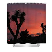 Joshua Trees Silhouetted Against A Red Sky Shower Curtain