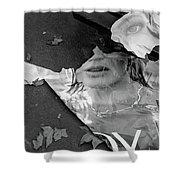 Joy Paris France Shower Curtain by Caffrey Fielding