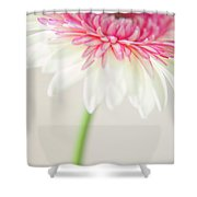 Joyful Whisper Shower Curtain