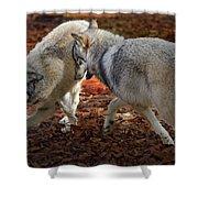 Joyful Wolves Shower Curtain