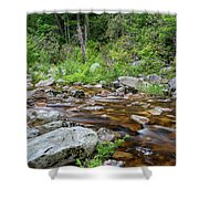 June Morning At The Peterskill Shower Curtain
