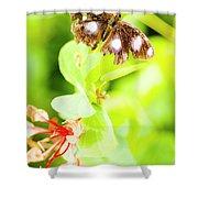 Jungle Bug Shower Curtain