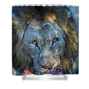 Jungle King With Kill With Killer Looks Shower Curtain