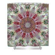Kaleidoscope Valentine  Shower Curtain