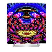 Kaleidoscopic Krystal Ball Shower Curtain