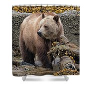 Keeping Watch Shower Curtain by Randy Hall