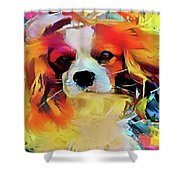 King Charles Spaniel On The Move Shower Curtain