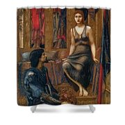 King Cophetua And The Beggar Maid 1884 Shower Curtain